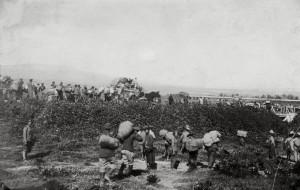 Oфицери от 12-ти пехотен Балкански полк пренасят багажа си от гарата до пленническия лагер Шамли край Солун (8 километра), 25 април 1919 г.